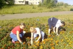 Цветы и МЫ